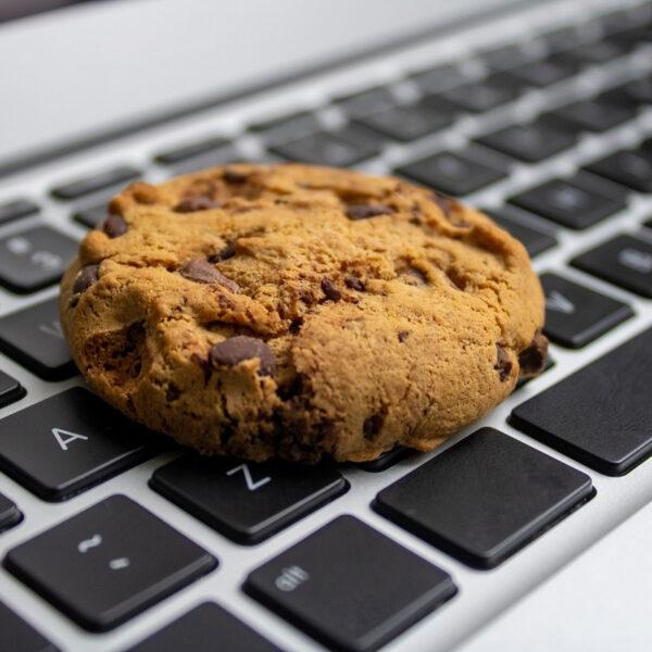 Pliki cookies (ciasteczka)