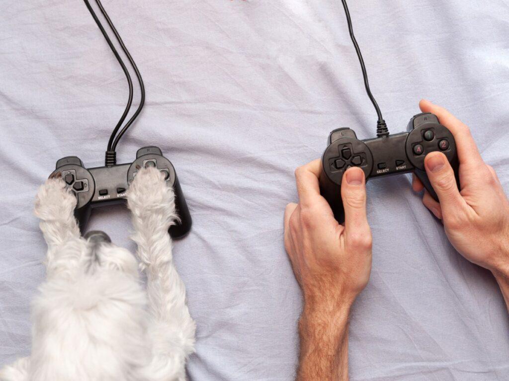 gry o psach, gamepad, łapki