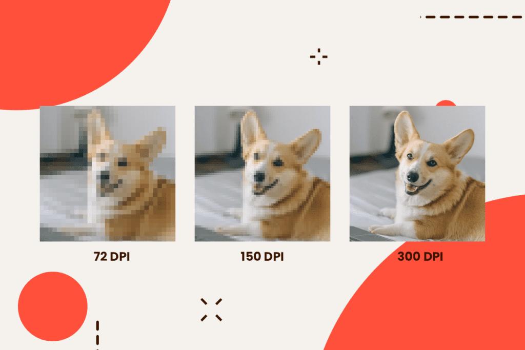 Jak przeliczać DPI na piksele?