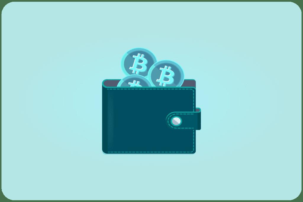 rodzaje portfeli kryptowalutowych