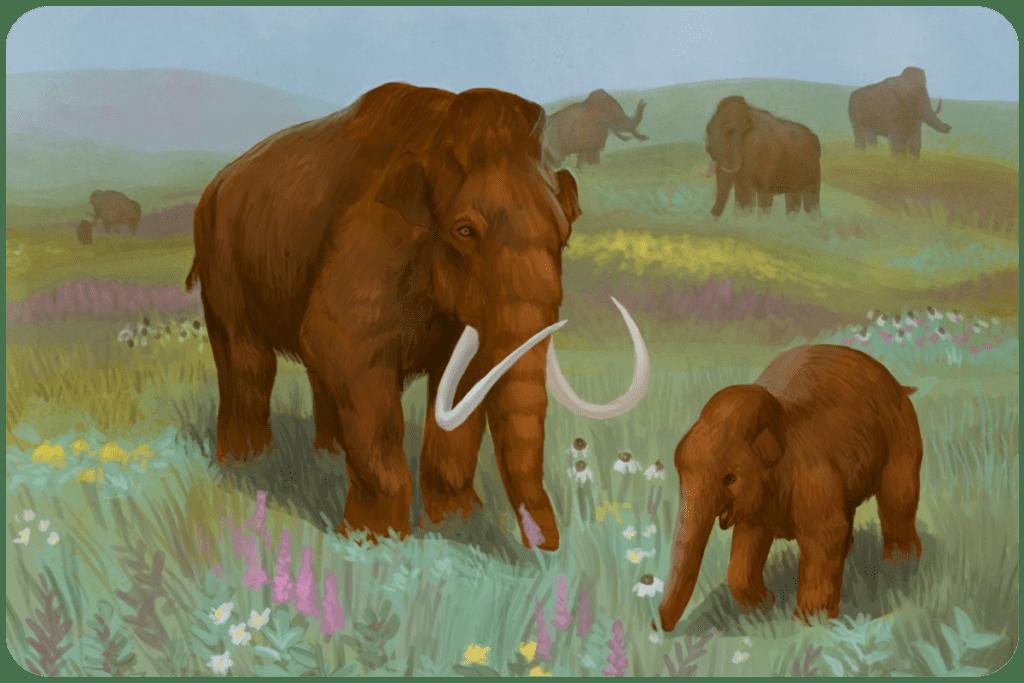 Roślinożerne mamuty jedzą trawę