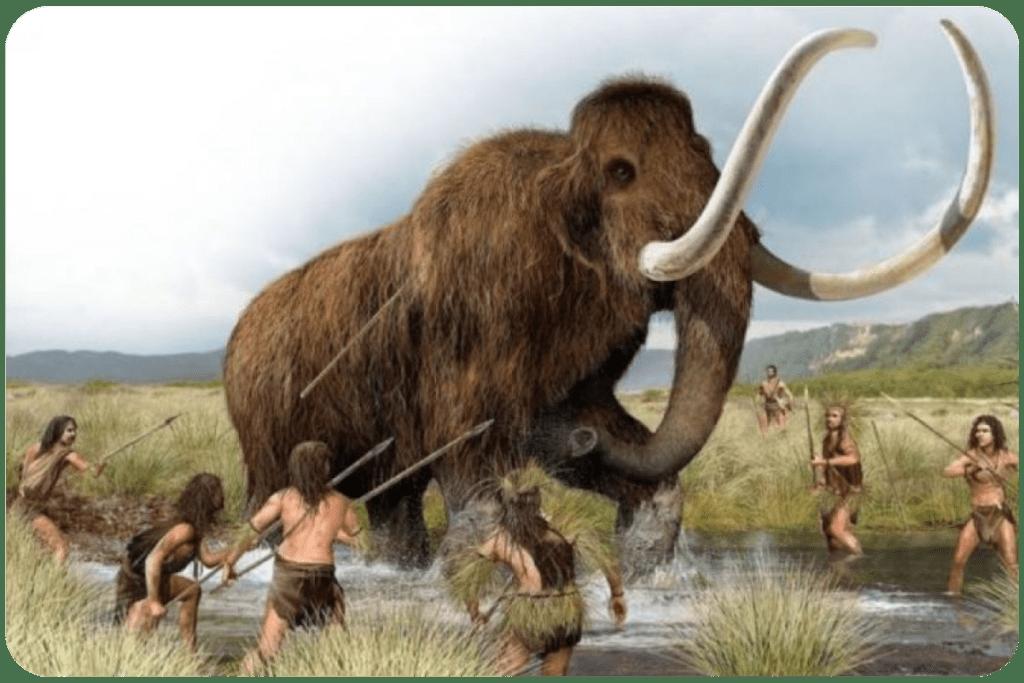 Walka mamuta